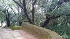 Kundadri-hill1